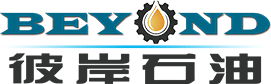 Shandong Beyond Petroleum Equipment Co., Ltd.
